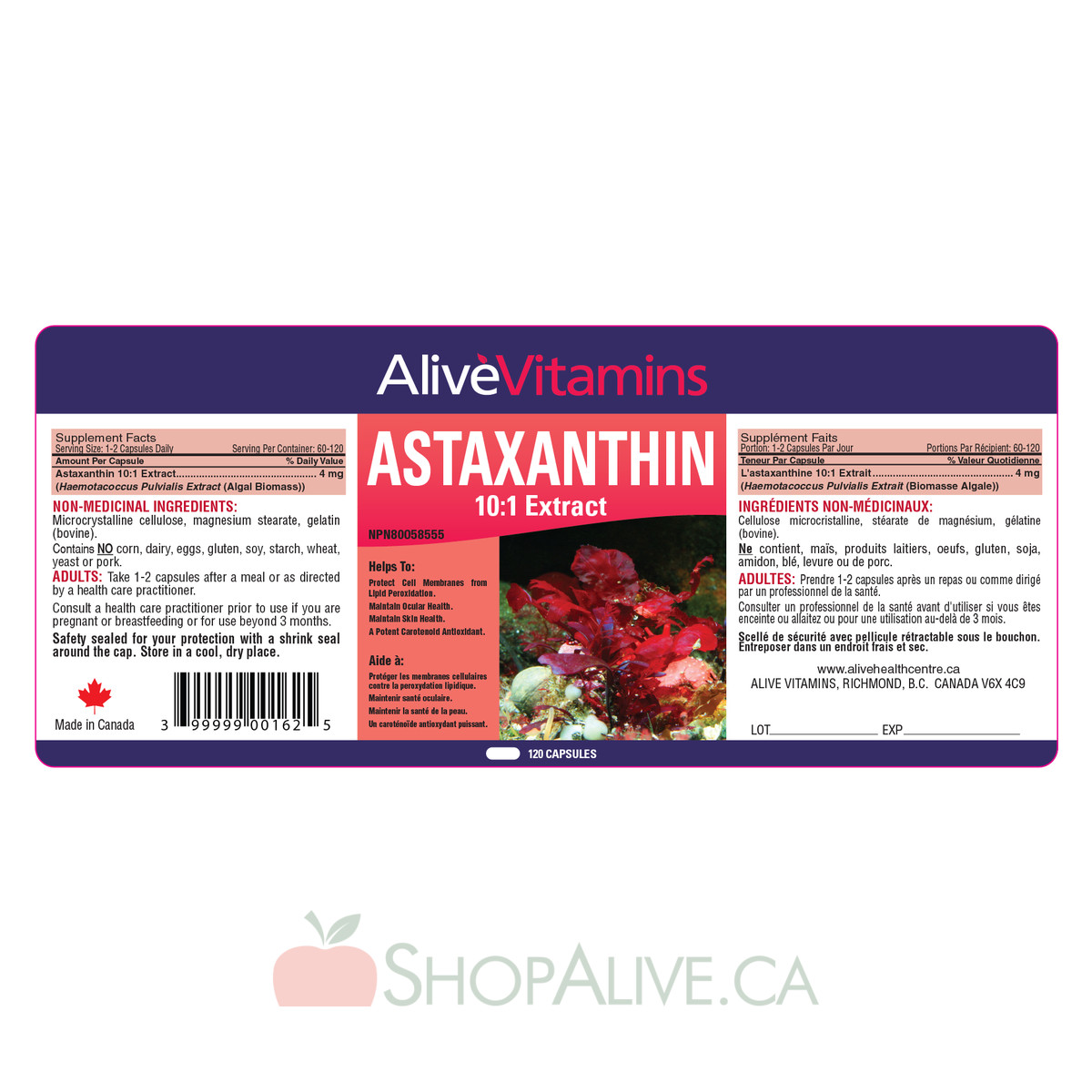 Astaxanthin 10:1 Extract - 4 mg