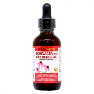 Echinacea with Golden Seal