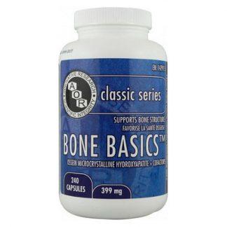 Bone Basics